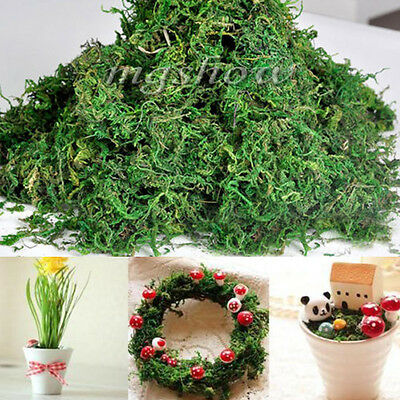 50g Dried Artificial Reindeer Moss Plant For Flower Hanging Basket Lining Decor