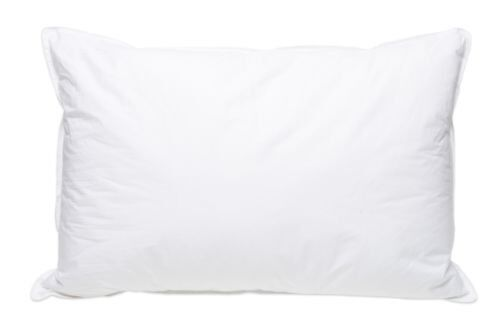 Pillowtex Classic Polyester Bed Pillow