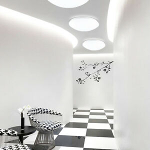 20W 30W 40W LED Ceiling Light Fixture Study Wall Lamp Modern Flush Mount UUS