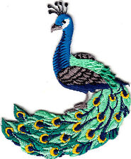 """PEACOCK PATCH (2 3/4"""" X 2 1/4"""") IRON ON EMBROIDERED APPLIQUE - BIRDS - PEACOCKS"""