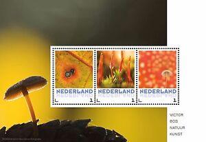 Alle-12-Postsets-Natuur-12-Velletje-van-3-zegels-3-ansichtkaarten-PF