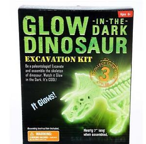 Glow in Dark  Tyrannosaurus T-REX Excavation kit fossil dig DINOSAUR bones DGTRX