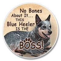Blue Heeler No Bones About It....... Auto Coaster Set