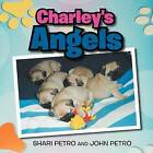 Charley's Angel by Shari Petro (Paperback / softback, 2011)