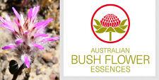 FIORI AUSTRALIANI Pink Mulla Mulla FERITE SPIRITUALI DIFFIDENZA/FIDUCIA APERTURA