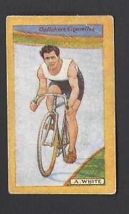 BOXING GALLAHER-BRITISH CHAMPIONS OF 1923-#62 G SHORTER