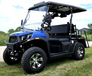 Gas Golf Cart Utility Vehicle UTV Rancher 200 EFI With Automatic Trans