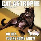 Cat-astrophe by Willow Creek Press 9781682343425 Calendar 2016