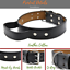 thumbnail 1 - Leather-Dog-Collar-With-Handle-For-Dog-Pet-Control-Training-Heavy-Duty-M-L-XL