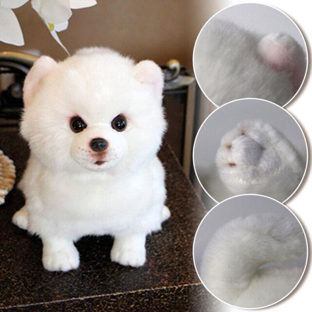 Realistic Pomeranian Toy Plush Pomeranian Toy Doll Stuffed Samoyed Dog Kids Gift