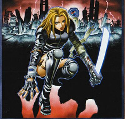 the Empowered Warrior Common Card 3x Yugioh YS14-EN014 Terratiger