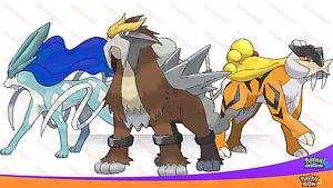 Shiny 6iv legendary beast trio entei raikou suicune pokemon ultra sun moon sm ebay - Legendaire shiney ...