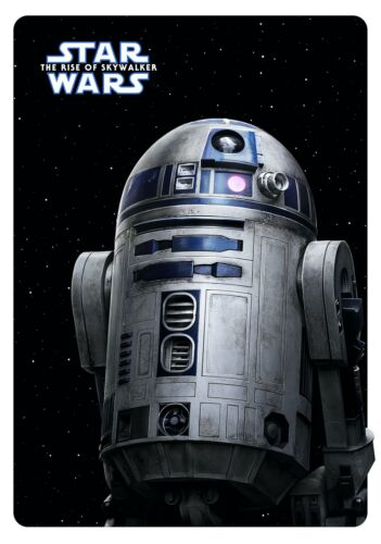 STAR WARS; THE RISE OF SKYWALKER Movie PHOTO Print POSTER IMAX 9 AMC Film Art