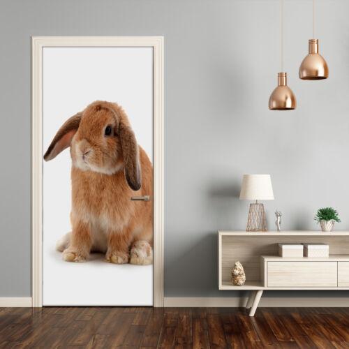 Türfolie selbstklebend Klebefolie Wandaufkleber Schlafzimmer Tiere Kaninchen