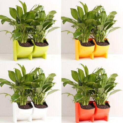 F3D8 2-Poche Flowerpot Wall Hanging Plant Pots Planteur Pot de fleur