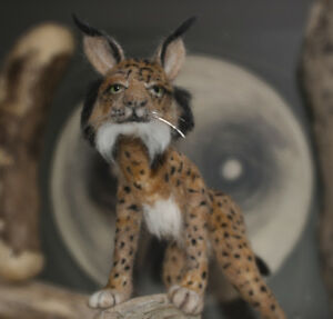 Needle-Felted-Lynx-this-one-is-sold-and-is-an-example-only-made-to-order