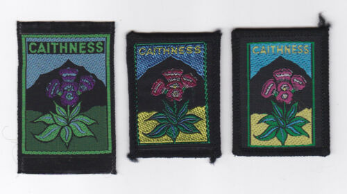 SCOUTS OF SCOTLAND SCOTTISH CAITHNESS SCOUT COUNTY PATCH 3 VAR