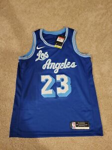 Nike Los Angeles Lakers LeBron James Royal Hardwood Classic ...