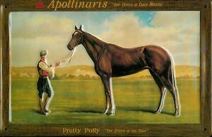 Apollinaris-Horse-Letrero-de-Metal-3D-en-Relieve-Arqueado-Cartel-Lata-20-X-30CM