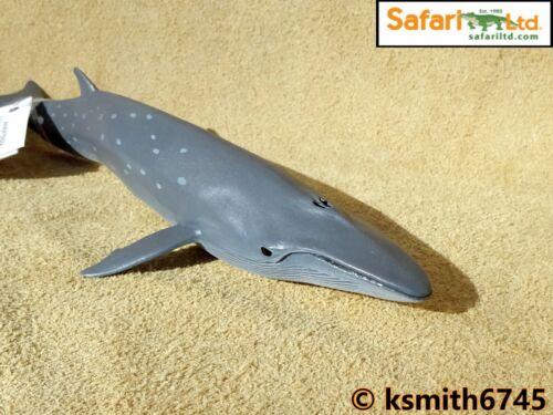 Ballena de juguete de plástico sólido Safari Sei Wild Zoo Animal Mar Marina Nuevo