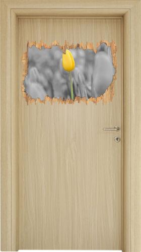 3D-Look Holzbruch Wandtattoo Aufkleber-Sticker Tulpenmeer