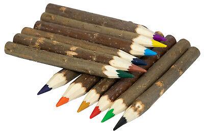 Astbuntstifte Buntstifte aus Ast Holzbuntstifte Farbstifte 6 Stück sortiert