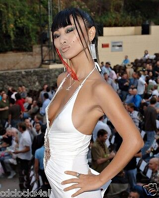 Bai Ling The Crow 8 x 10 8x10 GLOSSY Photo Picture IMAGE #2