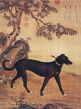 PAINTING ANIMAL CASTIGLIONE PRIZED DOGS XUELUZHUA GREYHOUND ART PRINT LAH379A