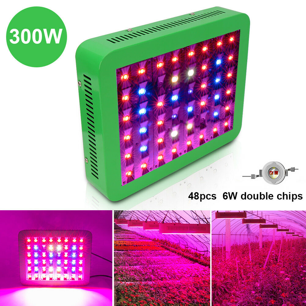 300W LED Grow Pflanzen Vollspektrum Lamp with on off Veg Bloom Switch für Blaumen