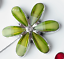 Magnetica-cortina-de-Flores-de-Vidrio-Cristal-Piedra-NETO-VOILE-Tiebacks-8-90-Par