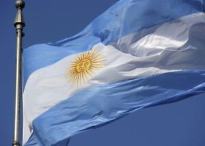 Details about Large Flag Of Argentina Football Rugby Los Pumas Bandera  Oficial de Ceremonia
