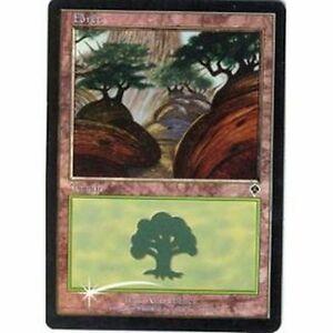 Lot-de-10-forets-PREMIUM-FOIL-Forests-Terrain-Lands-Magic-Mtg