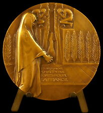 Médaille à Raymond Berr mort à Auschwitz ets Kuhlmann sc Bazor c 1950 68mm medal