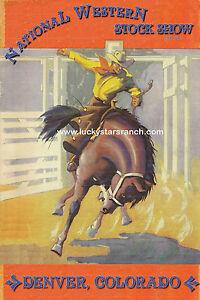 Denver-National-Western-Rodeo-Print