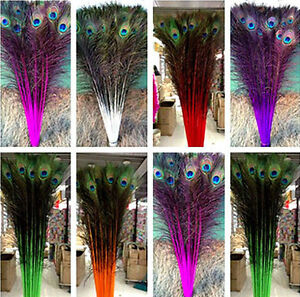 perfect 20 100 pcs peacock feathers eye 28 32 inches 75 80 cm choose ebay. Black Bedroom Furniture Sets. Home Design Ideas