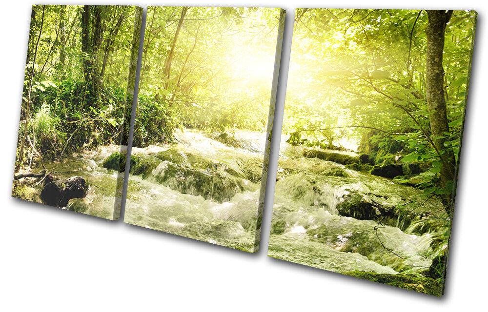 Forest Stream River Grün Landscapes TREBLE Leinwand Kunst Bild drucken