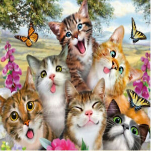 Full Drill DIY 5D Cute Cat Kitty Diamond Painting Home Wall Decor Embroidery