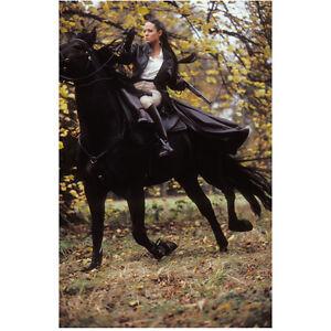 Lara Craft Horse