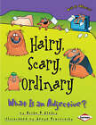 Hairy, Scary, Ordinary: What is an Adjective by Brian Cleary (Paperback, 2009)