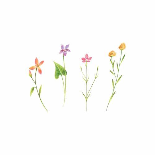 Petite Florals Tattly Temporary Tattoos Set of 2