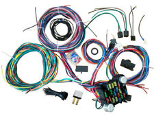 1953 - 1956 Ford Pickup Truck 12 Circuit Wiring Harness Wire Kit F  F Wiring Harness on f350 wiring harness, f550 wiring harness, ranger wiring harness, f1 wiring harness, gt wiring harness, f650 wiring harness, f15 wiring harness, f150 wiring harness, mustang wiring harness,
