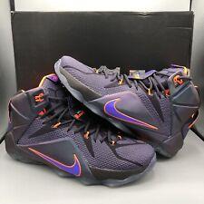 Nike Lebron XII 12 Mens 684593 583 Instinct Purple Grape
