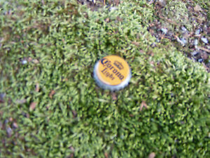 Sneaky-Pete-039-s-Sneaky-Bottle-Cap-Geocache-Cache-Containers