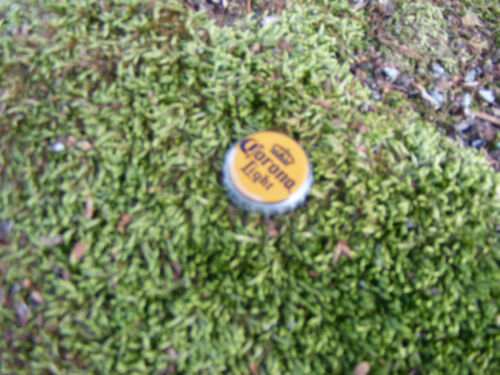 Sneaky Pete/'s Sneaky Bottle Cap Geocache Cache Containers
