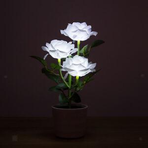 Lumieres-de-Jardin-Fleur-Lampe-LED-Spot-Paysage-Luminaires-Solaire-Maison