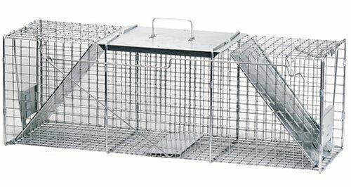 Havahart 1050 Live Animal Two-Door Large Raccoon and Opossum Cage Trap