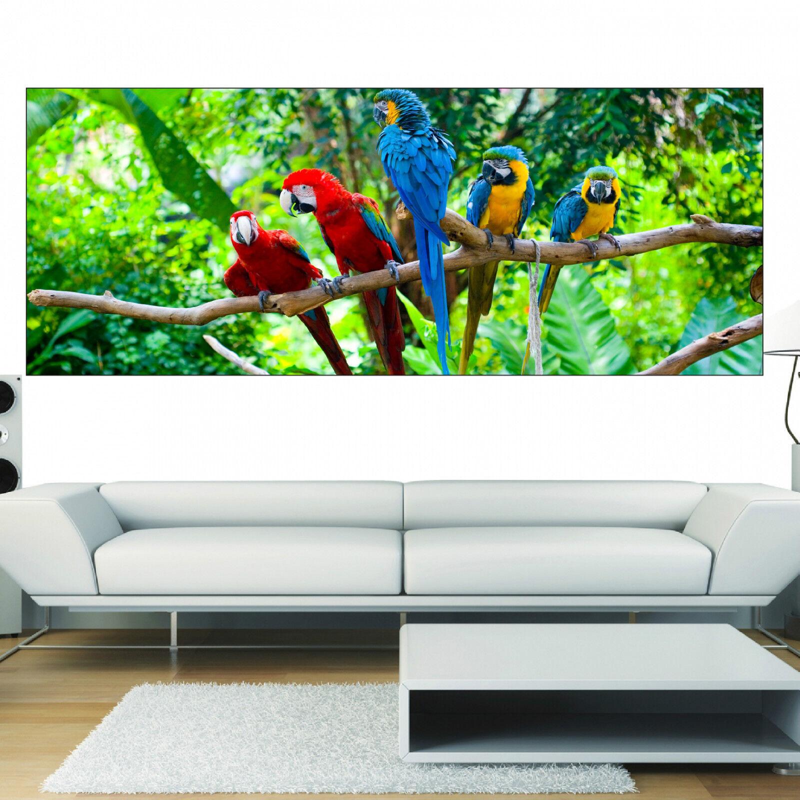 Aufkleber Panorama Deko Papageien Ref 3645 (13 Größe)