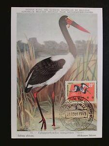 Appris Rwanda Mk 1963 Oiseaux Oiseau Bird Birds Maximum Carte Maximum Card Mc Cm C8101-afficher Le Titre D'origine De Haute Qualité Et Peu CoûTeux