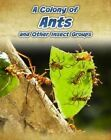 A Colony of Ants: And Other Insect Groups by Anna Claybourne (Hardback, 2012)
