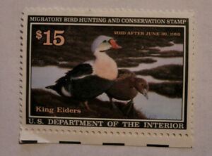 UNUSED MIGRATORY BIRD HUNTING CONSERVATION STAMP 1992 King Eiders